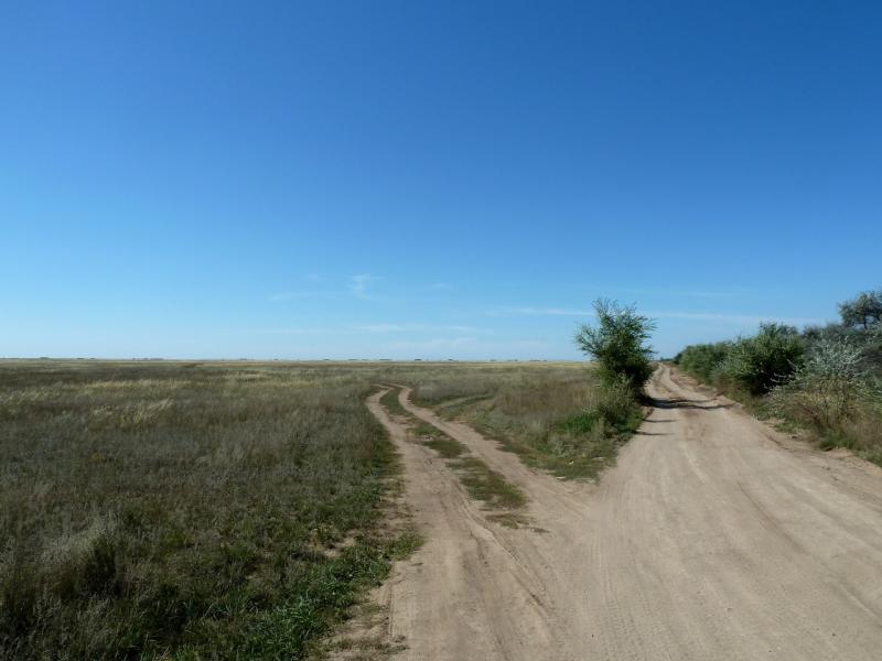 20130907. Очередная развилка полевых дорог, у канала Иртыш-Караганда.
