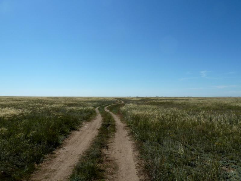 20130907. Степная дорога в местности между Евгеньевкой, Калкаманом и Майкаином.