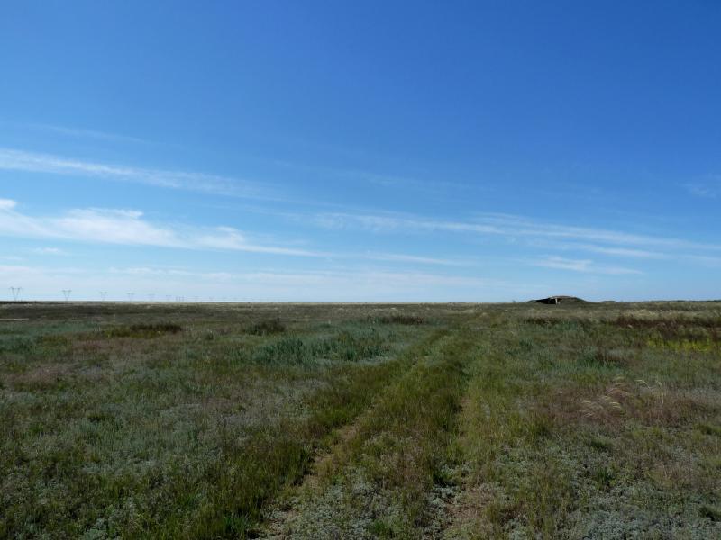20130907. Заброшенная степная дорога в местности между Евгеньевкой, Калкаманом и Майкаином.