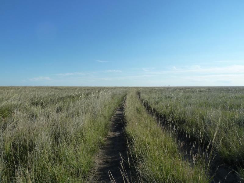 20130907. Дорога низиной, у солёного озера Жамантуз.