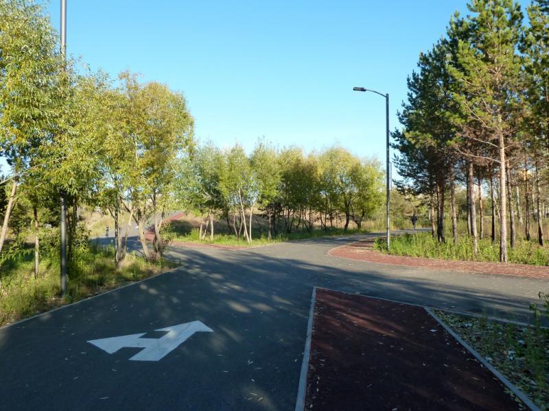 20131020. Астана: велосипедные (роллерные) дорожки в центральном парке (тротуары для бега сделаны из более мягкого покрытия).
