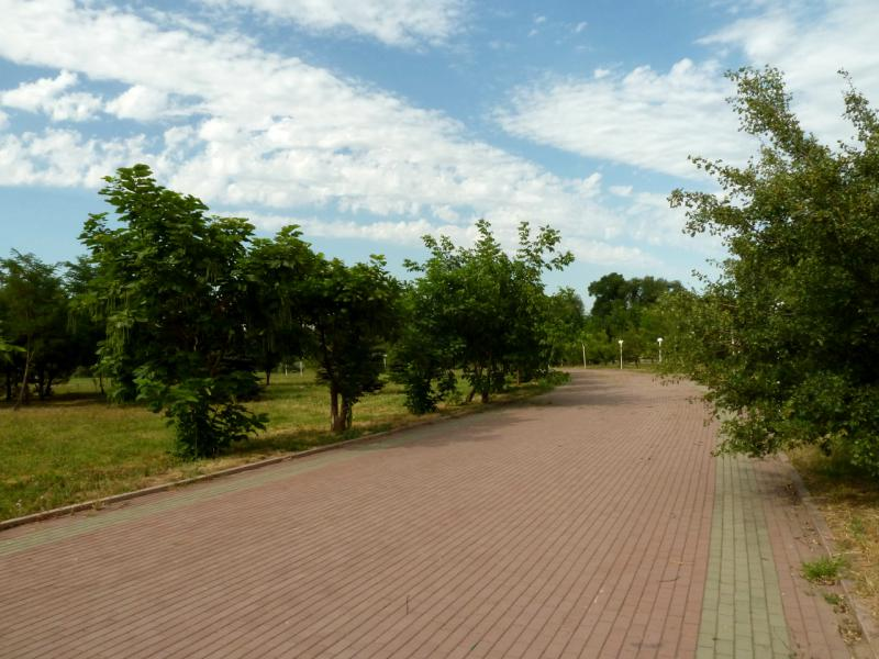 20140724. Алматы. Парк первого президента. Юго-восточная аллея.