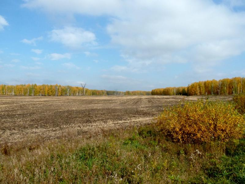 20140926. Поля на севере Челябинска.