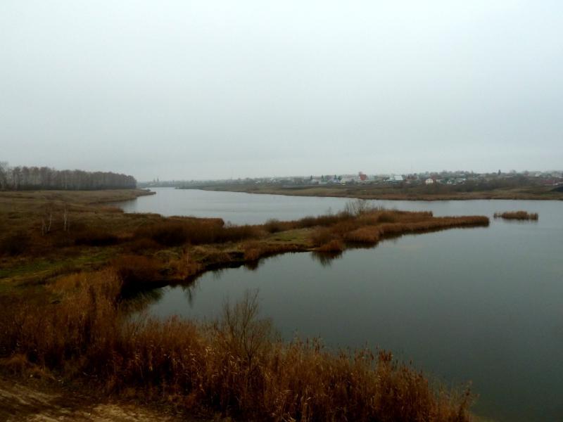 20141112. Тамбов. Вид на запруженную речку Большая Липовица, в районе посёлка Пушкари.