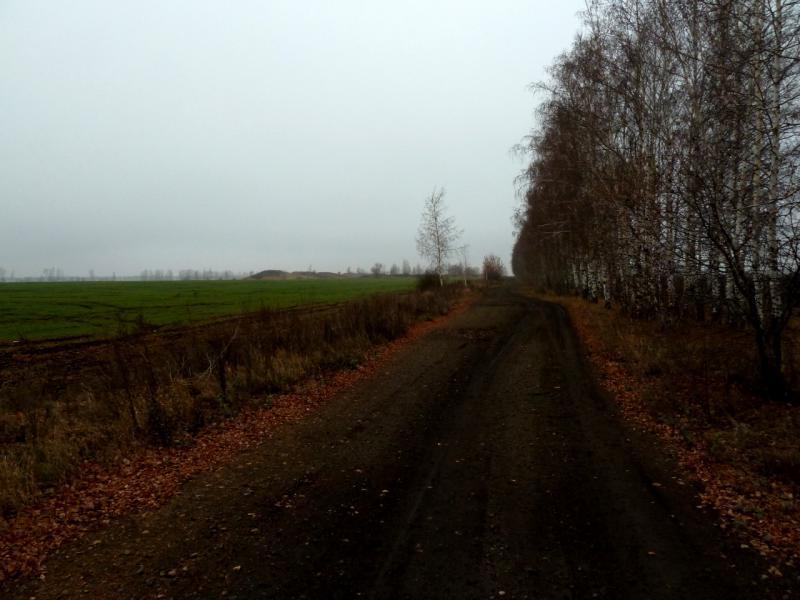 20141112. Тамбов. Полевая дорога в районе тренировочного аэродрома.