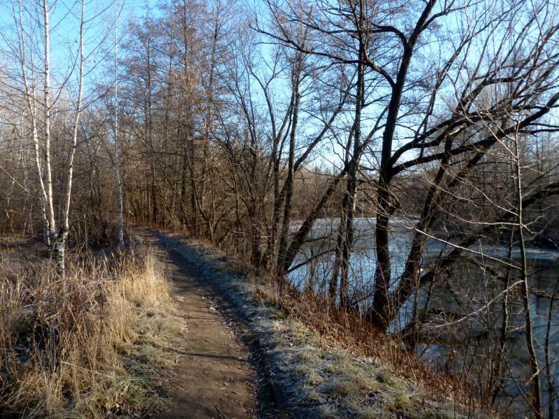 20141119. Тамбов. Тропа вдоль берега канала реки Цна.