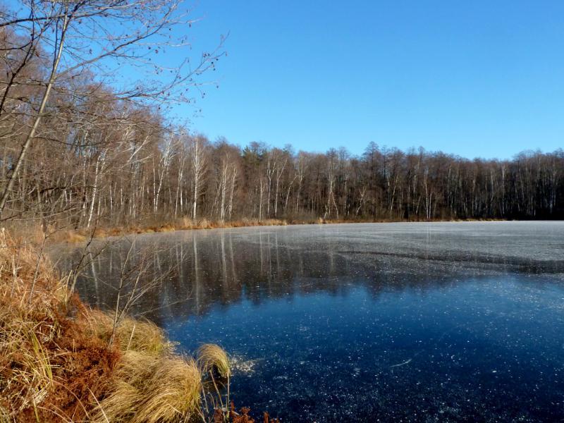 20141119. Тамбов. Вид на западный и северные берега озера Святовское.