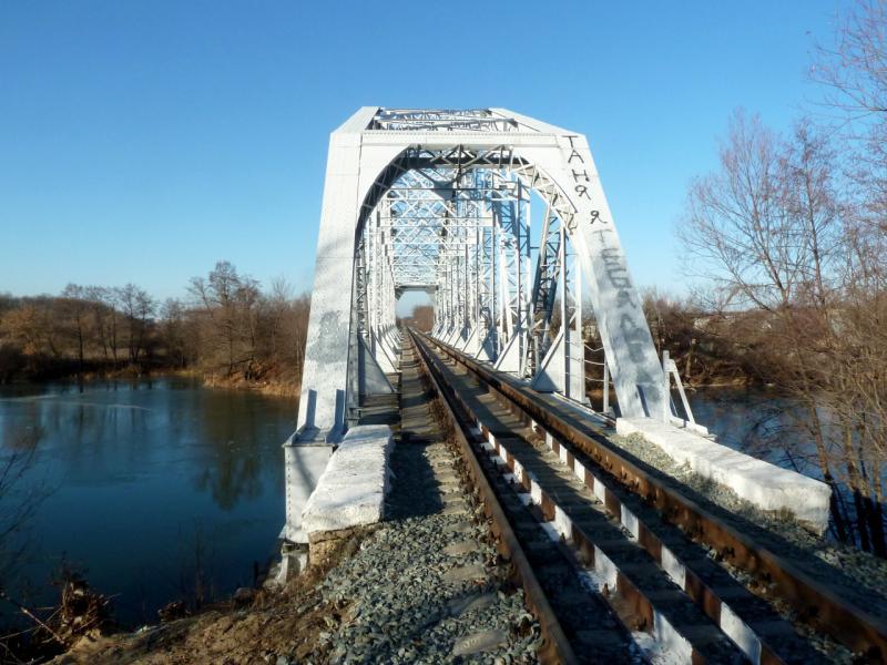 20141119. Тамбов. Мост через реку Цна котовской железнодорожной ветки.