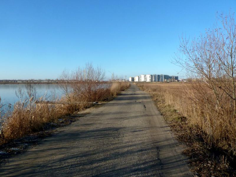 20141119. Тамбов. Дорога вдоль северо-восточного берега Бокинских прудов.