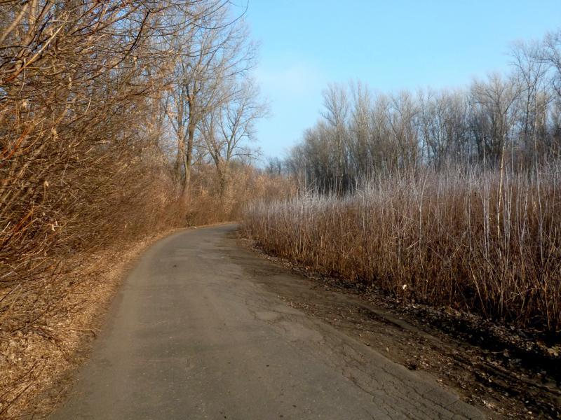 20141122. Тамбов в ноябре. Дорога к Чистоозёрному озеру.