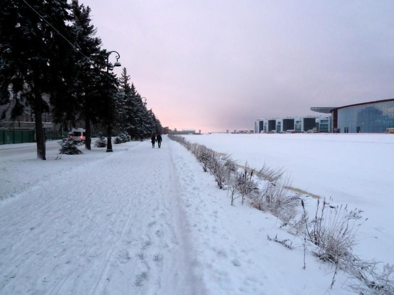 20150110. У Гребного канала, на северо-западе Крестовского острова.