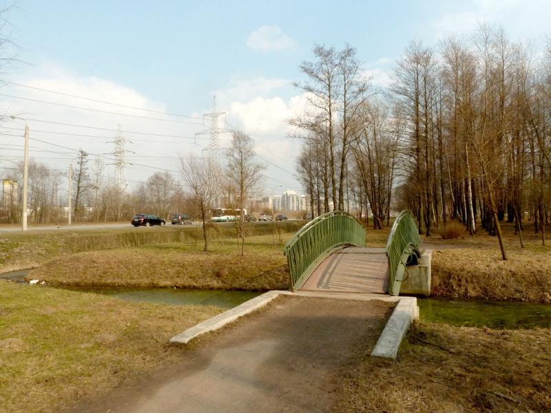 20150412. Санкт-Петербург. На тропинке парка между Петергофским шоссе и посёлком Ленино.