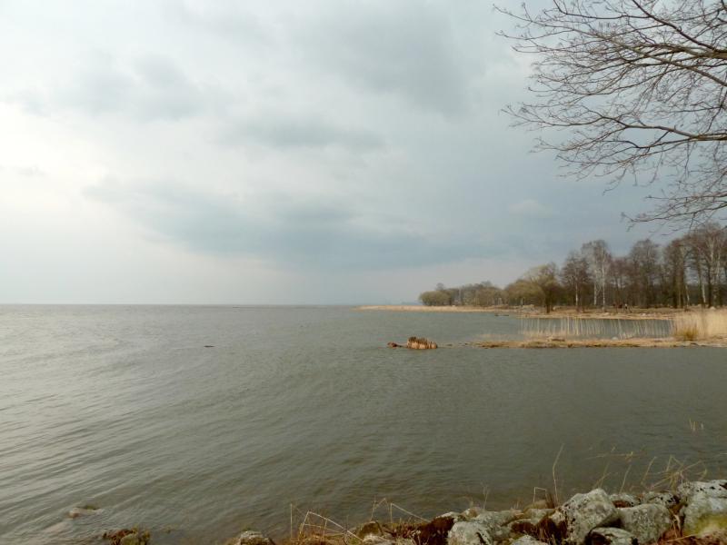 20150412. Петергоф. Вид на южный берег Финского залива с набережной парка Александрия.