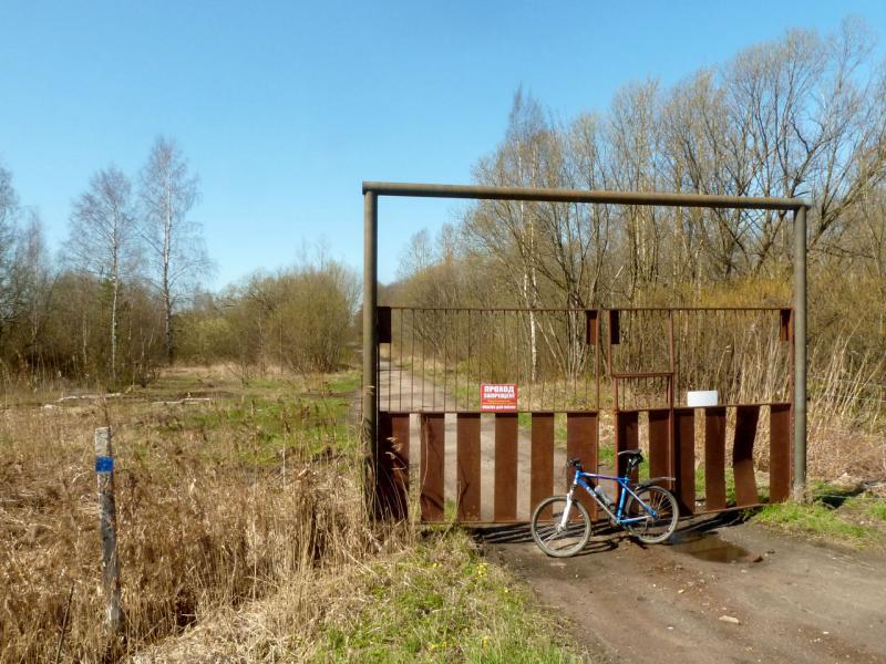 20150503. Кронштадтское. У незапертых запретных ворот заброшенного лесопарка под городом.