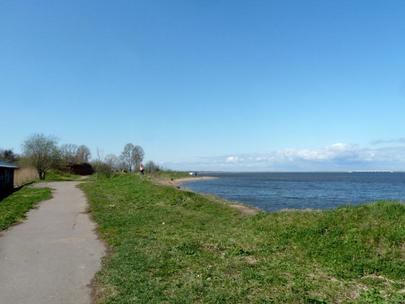 20150503. Кронштадтское. На северо-восточном берегу острова Котлин.