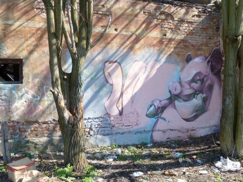20150503. Кронштадтское. Граффити на стене развалин Адмиралтейских складов у Обводного канала.