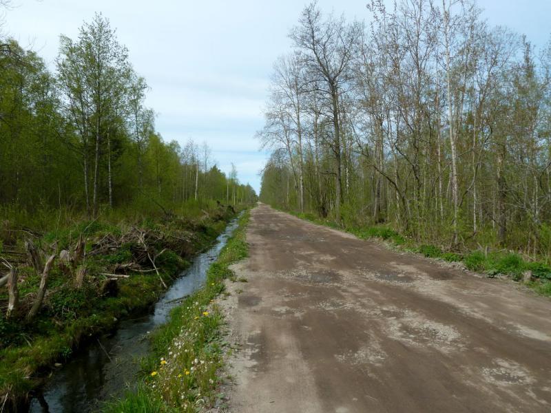 20160516. Служебная дорога, ранее использовавшаяся для связи между воинскими частями местности.