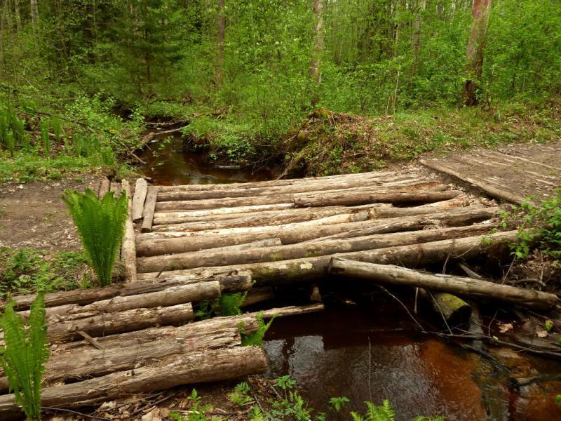 20160516. Деревянный самодельный мостик через ручей, впадающий через триста метров в реку Нева.