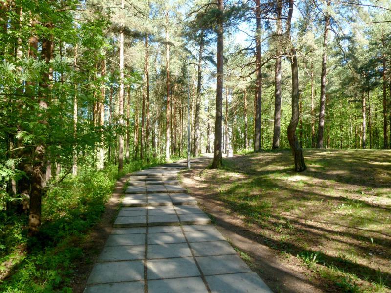 20150524. Дорожка в парке Белые Пески города ленинградских ядерщиков.
