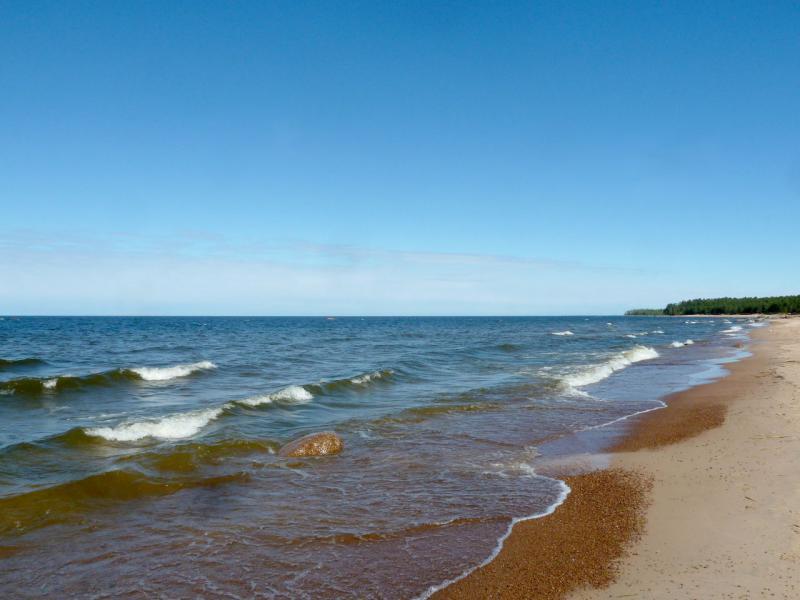 20150524. На берегу Балтийского залива.