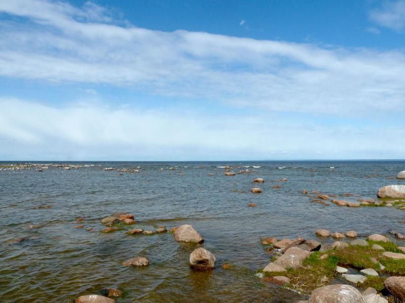 20150524. Утыканное естественными преградами побережье Балтийского залива.