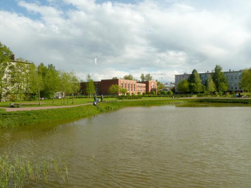 20150524. На берегу пруда в центральном парке города Ломоносов.