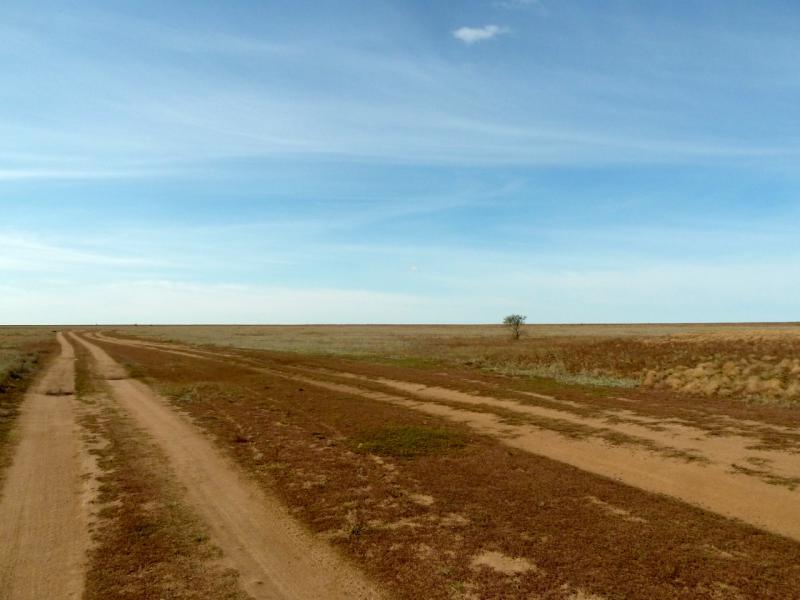 20150916. Грунтовая дорога от села Евгеньевка в юго-западном направлении.