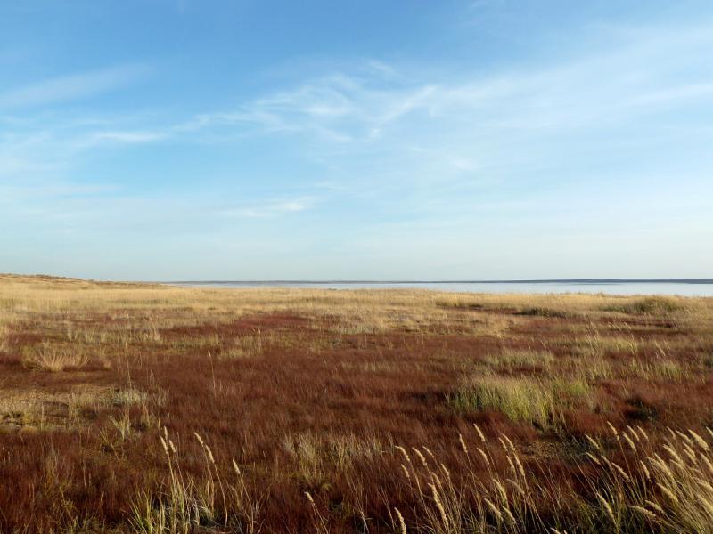 20150916. На подходах к горько-солёному озеру Алтыбайсор.
