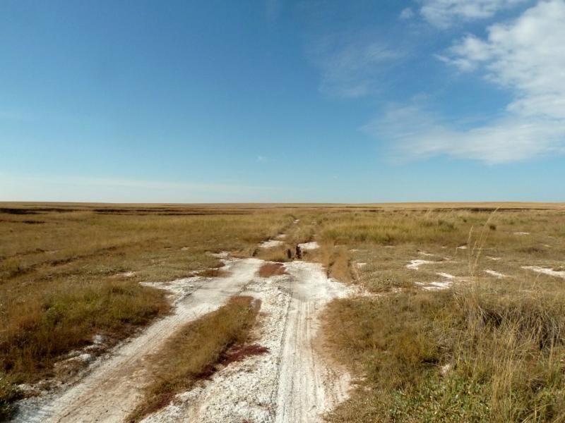 20150917. Дорога через типичный небольшой солончак в ложбинах между холмов мелкосопочника.