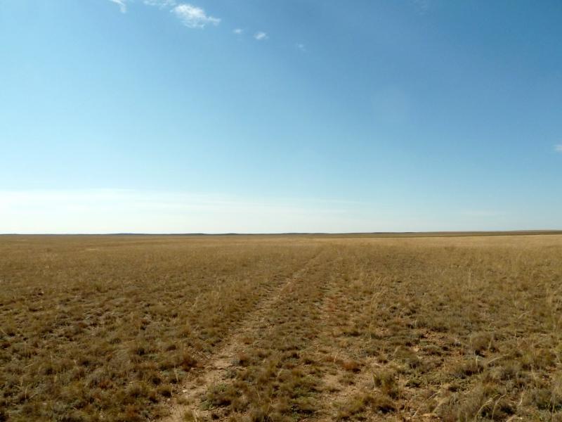 20150917. Заброшенная степная дорога вдоль слабо выраженных гор Кайдаул.
