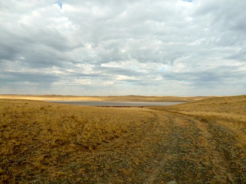 20150919. Безымянное солёное озеро неподалеку от зимника Онбиркора.