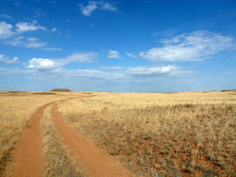 20150919. Дорога в холмах северной части казахстанского мелкосопочника.