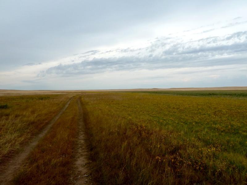 20150919. Дорога вдоль безымянной речушки в районе солёного озера Обалы-Бекелексор.