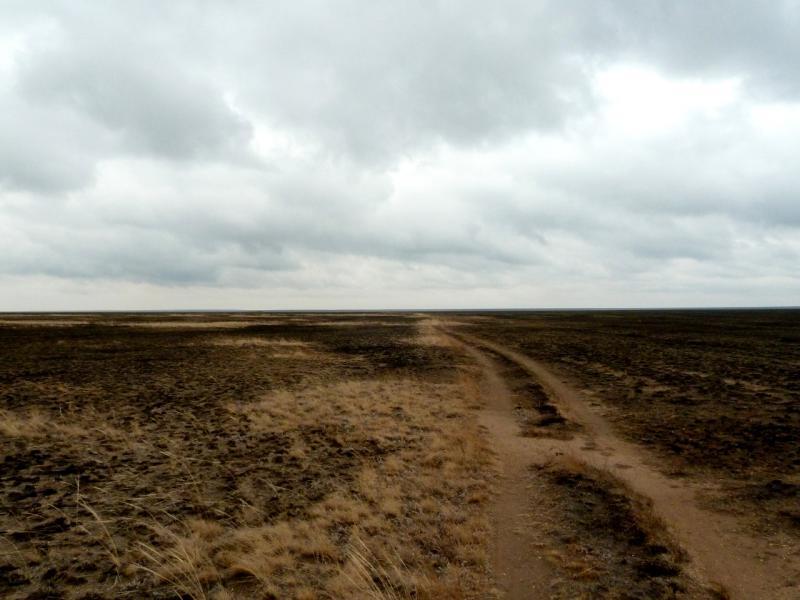 20150920. Дорога через горелую степь в районе озёр Бозшасор и Алтыбайсор.