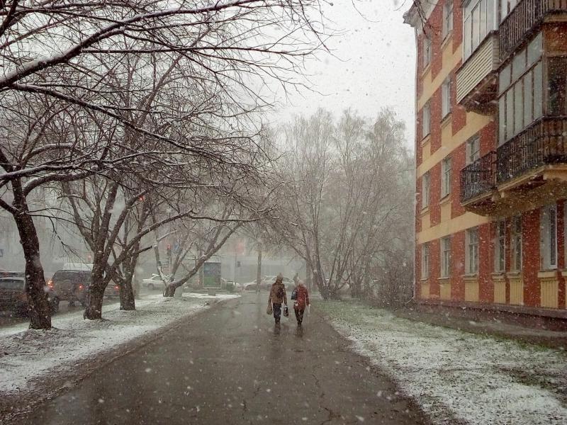 20170502. В новосибирском Академгородке. Последние капризы зимы, накидавшей снегу в мае.