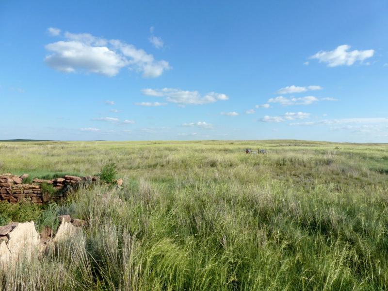 20160805. У развалин скотоводческой базы Балкыдак.