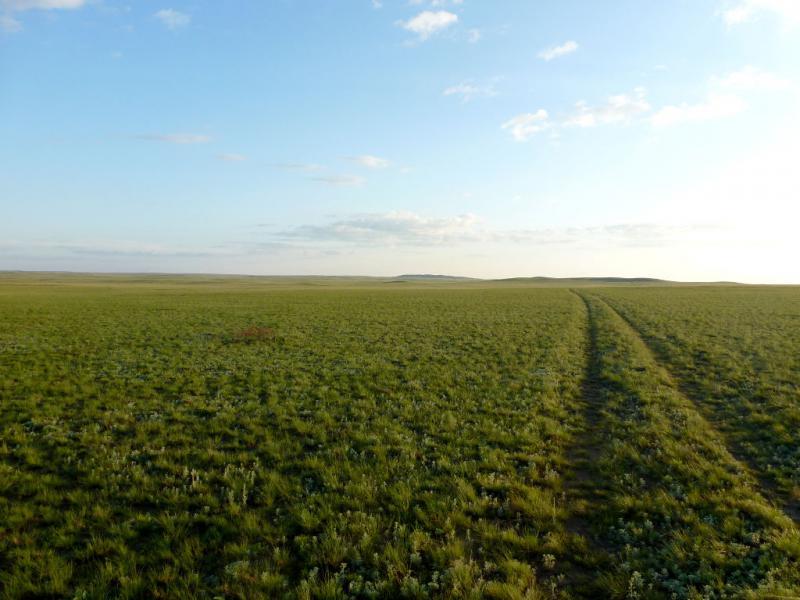 20160805. Степная дорога в заброшенной неплодородной местности, которые составляют большую часть территории Казахстана.