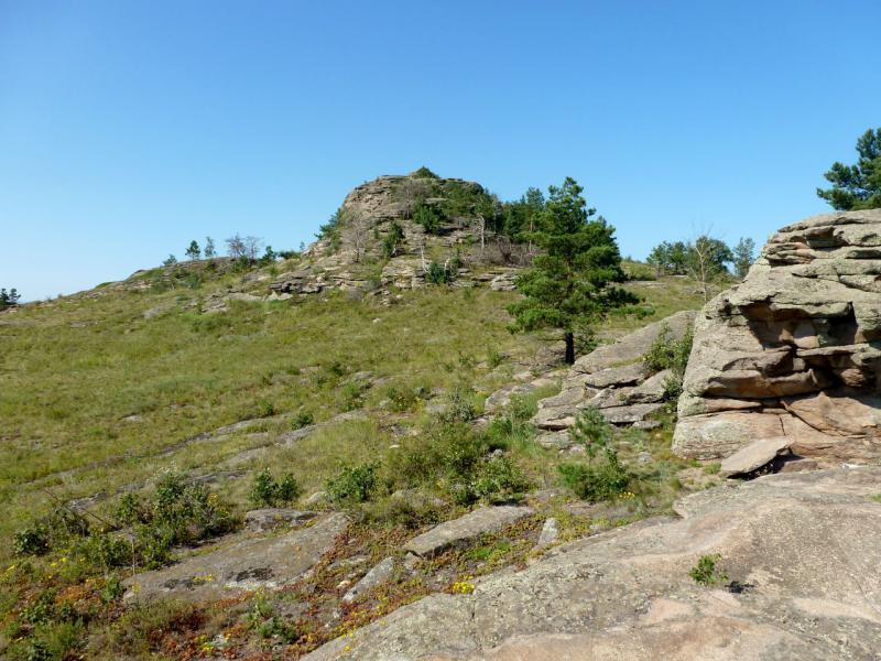 20160809. На скалах сопки южного края Соколиных гор.
