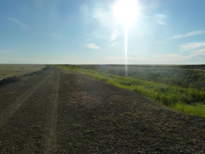 20110806. Павлодар-Астана. Дорога хрустящего гуано.