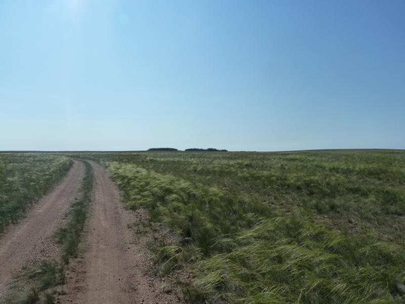 20110811. Павлодар-Астана. На горизонте спасение от палящего солнца.