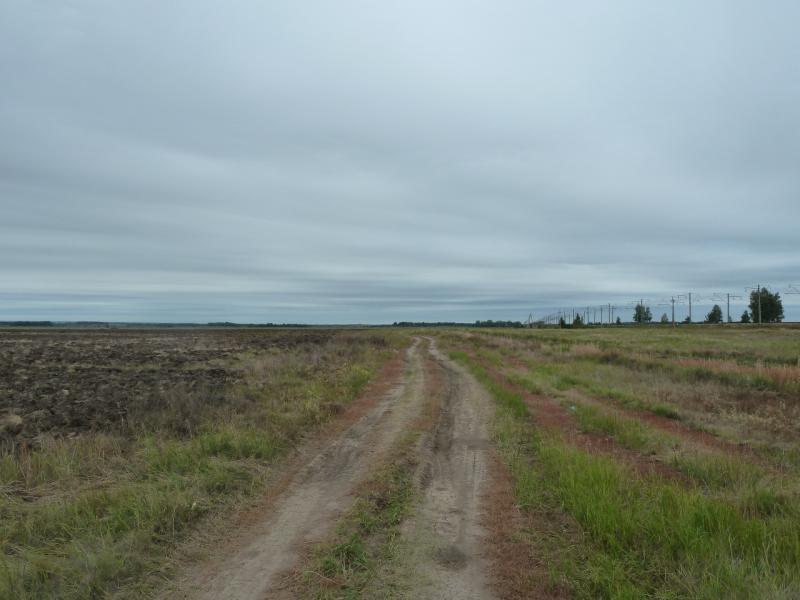 20110817. Астана-Боровое. Приближаемся к железной дороге.