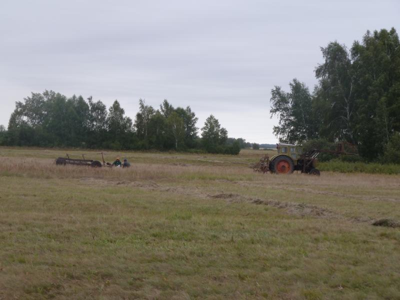 20110817. Астана-Боровое. Сенокос под Орнеком (Сергеевка).