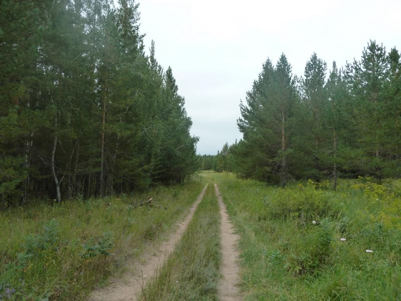 20110817. Астана-Боровое. Дороги, которыми можно ехать и ехать.