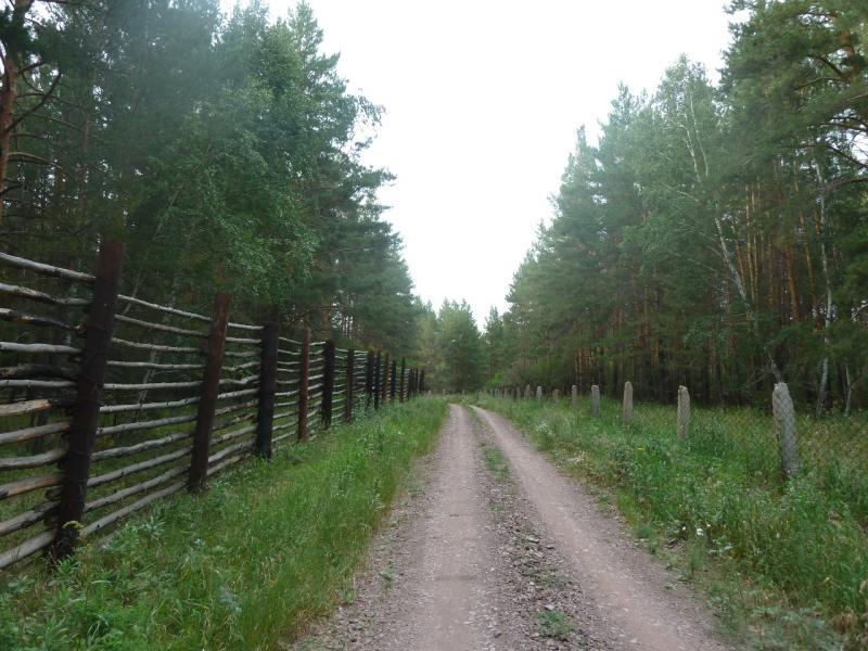 20110817. Астана-Боровое. Лесные рекреации под Красным Кордоном.