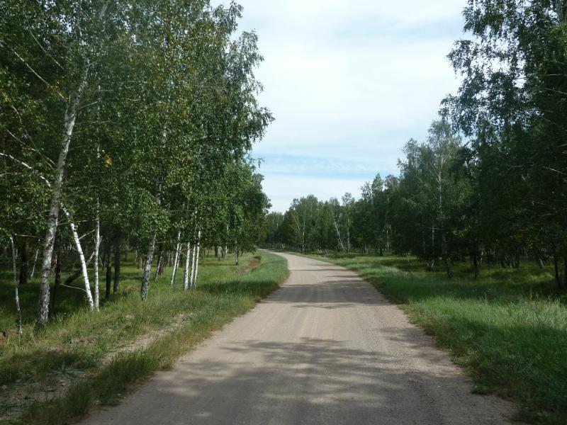 20110821. Боровое. Гравийная дорога, пересекающая заповедник Боровое.