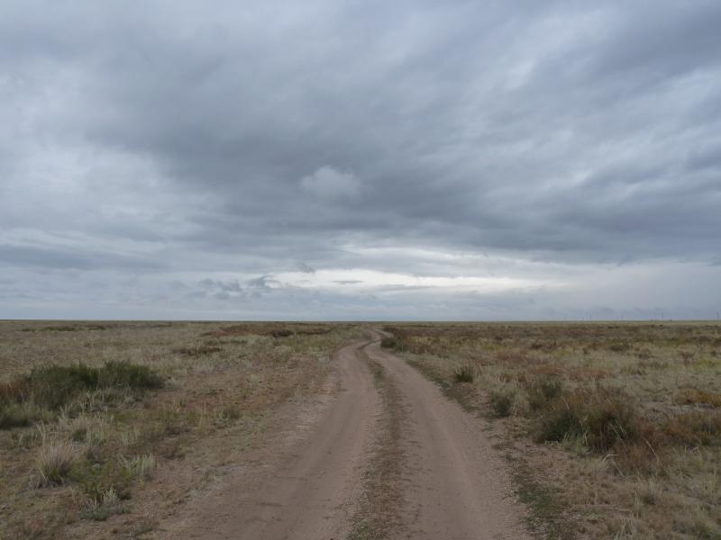 20110823. Боровое-Павлодар. Степная дорога от Бестобе к реке Силети.