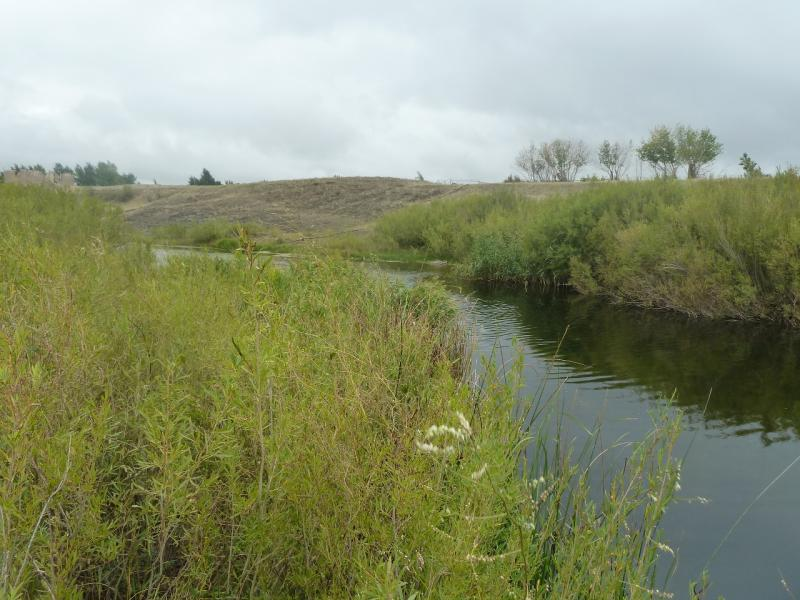 20110823. Боровое-Павлодар. Вода в реке Силети в районе села Изобильное.