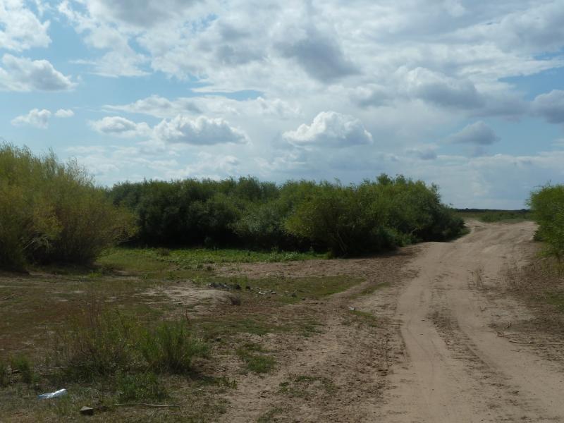 20110824. Боровое-Павлодар. Так выглядят притоки реки Силеты в конце лета.