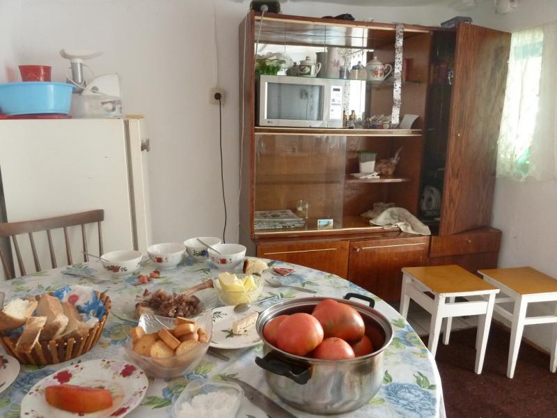 20110824. Боровое-Павлодар. Стол чаепития на летней кухне в деревне.