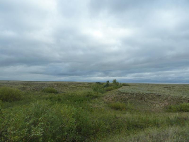 20110825. Боровое-Павлодар. Лощинка у солёного озера Кумсаксор.